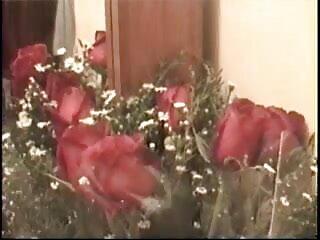 एलिसन हिंदी वीडियो सेक्सी मूवी टायलर और सिरी